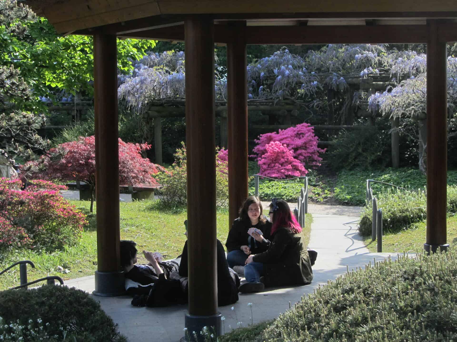 Führung Hamburg: Planten und Blomen - Japanischer Garten -  Foto: Heinz Köhler